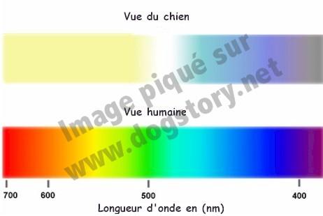 spectre couleur
